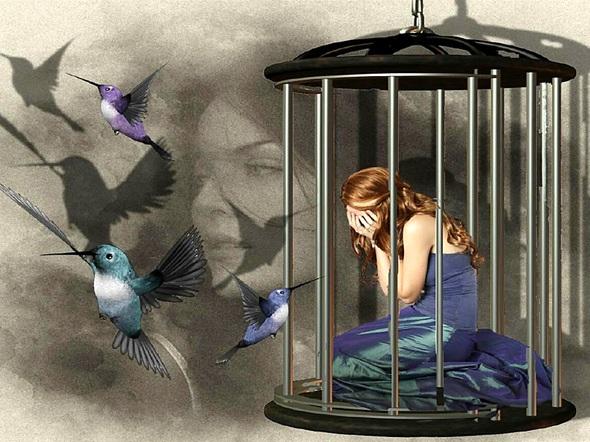 fanget i bur