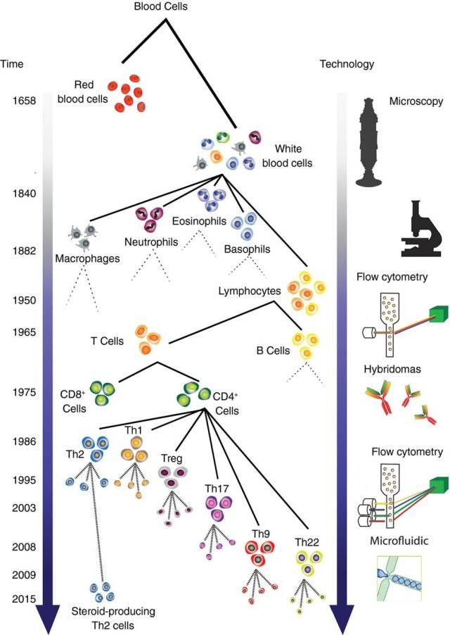 Teknologi og celleidentifisering