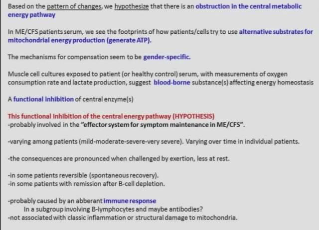 fluge_rme_okt2016_energimetabolisme-_tendens-og-hypotese